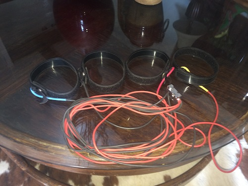 Another picture of the SCIO EPFX wrist/ankle straps showing more of the cables