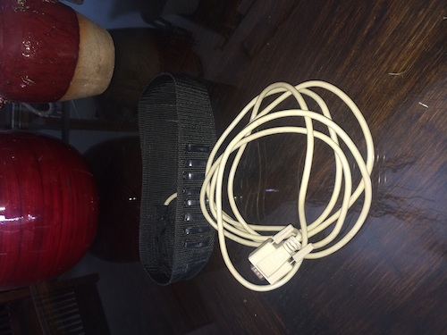 The original SCIO EPFX head harness