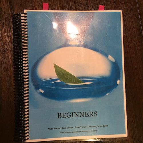 Beginners SCIO Manual by The Quantum Academies